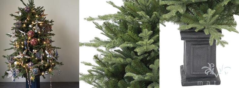 : レッグコンシャスツリー150cm